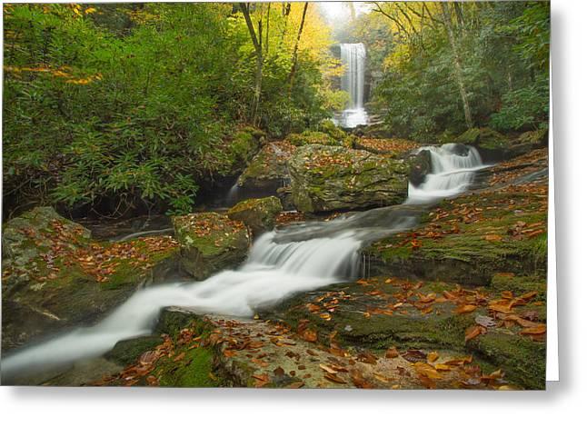 Appalachian Stream Greeting Card by Doug McPherson