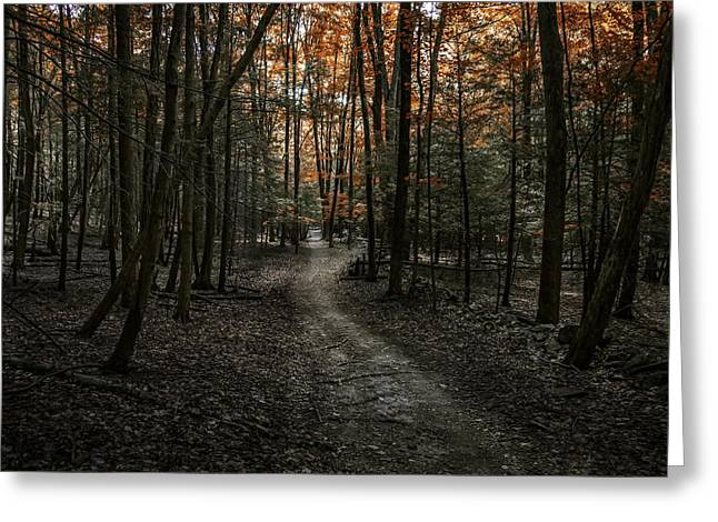 Appalachian Trail Greeting Card by Anthony Fields