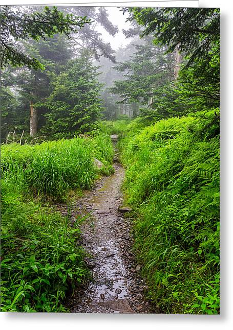 Appalachian Trail At Clingmans Dome Greeting Card
