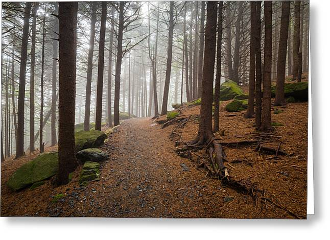 Appalachian Trail Landscape Photography In Western North Carolina Greeting Card by Dave Allen