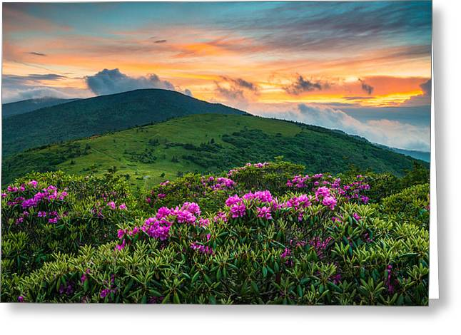 North Carolina Appalachian Trail Roan Mountain Highlands Greeting Card by Dave Allen
