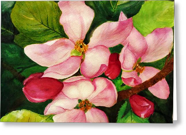 Apple Blossom Greeting Card by Anjali Vaidya