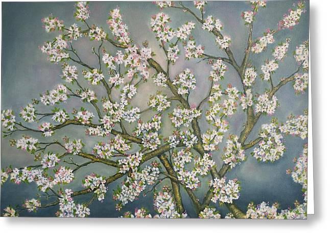 Apple Blossom Branches Greeting Card by Debra Bucci