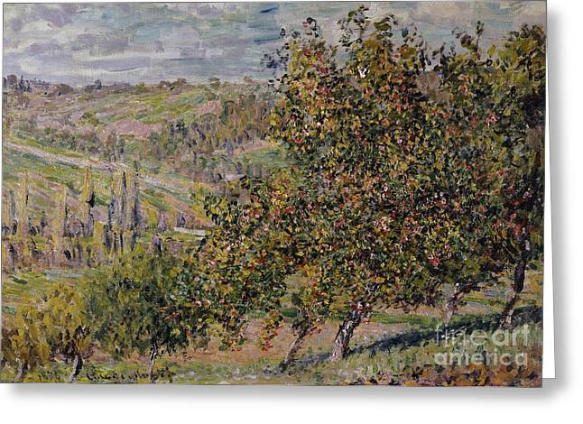 Apple Blossom Greeting Card by Claude Monet
