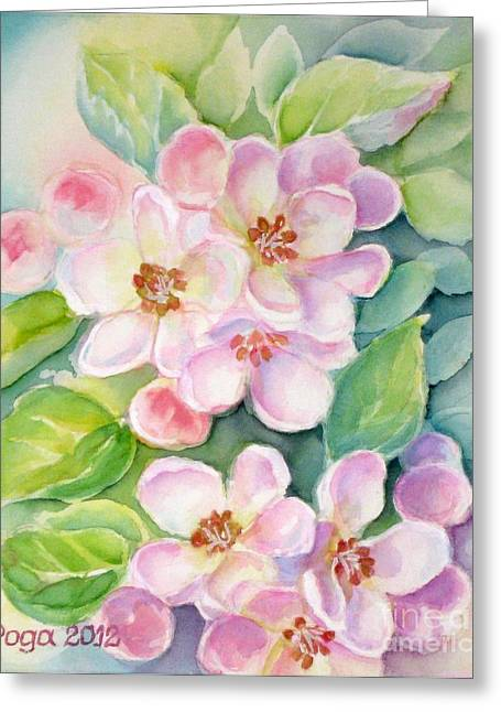 Apple Blossoms 1 Greeting Card