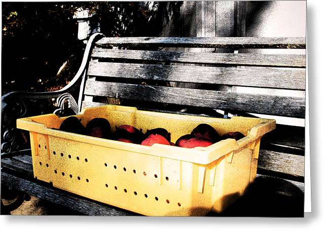 Greeting Card featuring the photograph Apple Picking by Meaghan Troup