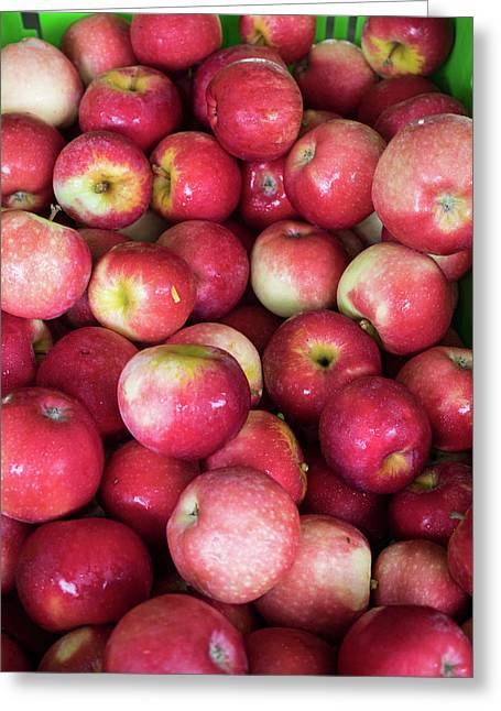 Apples For Sale At Street Market Greeting Card by Panoramic Images