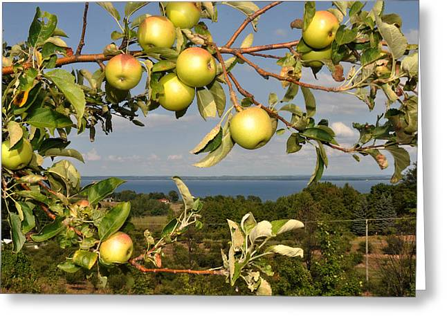 Apples Over Grand Traverse Bay Greeting Card
