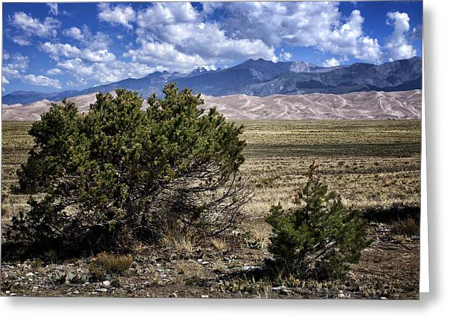 Approaching Great Sand Dunes #1 Greeting Card