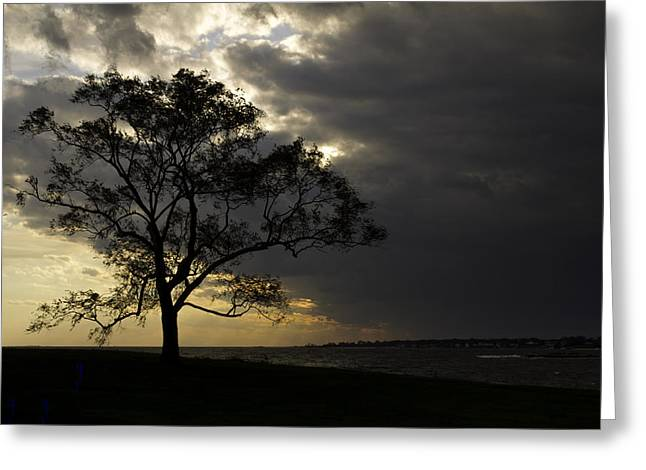 Approaching Storm Greeting Card by David Freuthal