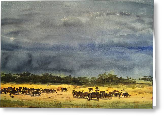 Approaching Storms In Tarangire Tanzania Greeting Card by James Nyika