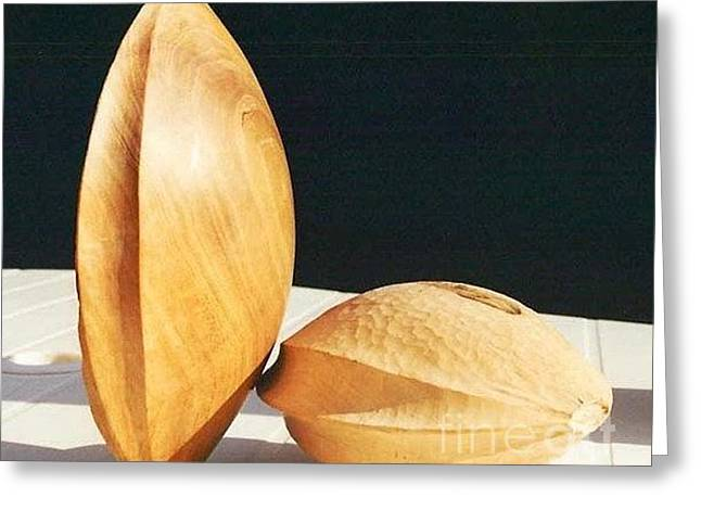 Apricot Seed And Shell Greeting Card by Gyula Friewald