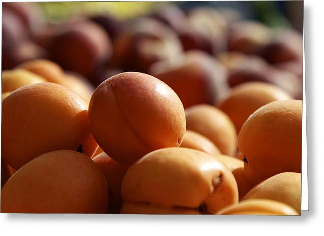 Apricots Greeting Card by Terry Horstman