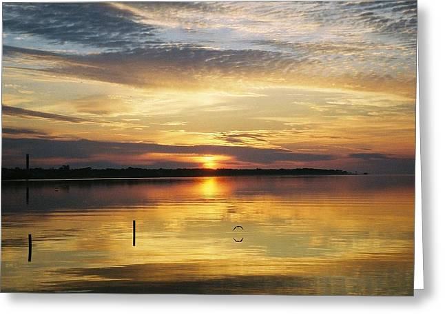 Greeting Card featuring the photograph April Reflections by Michele Kaiser