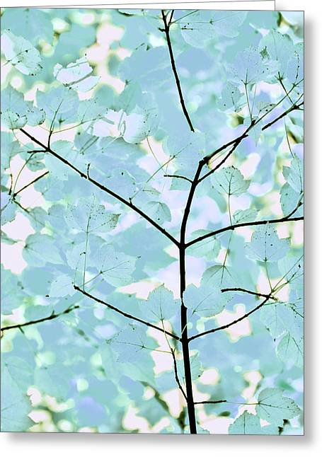Aqua Blues Greens Leaves Melody Greeting Card by Jennie Marie Schell