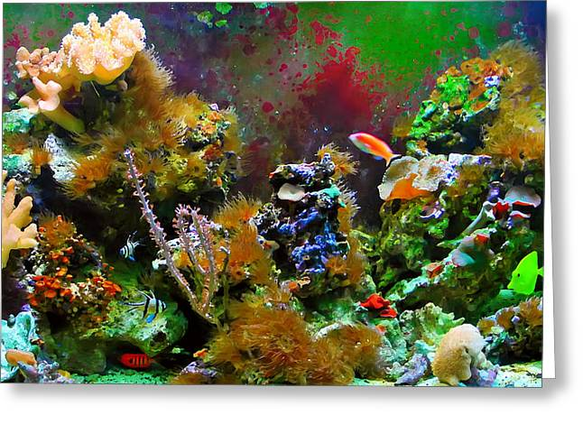 Aquarium Greeting Card