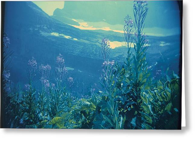Aquarium Mountain Greeting Card