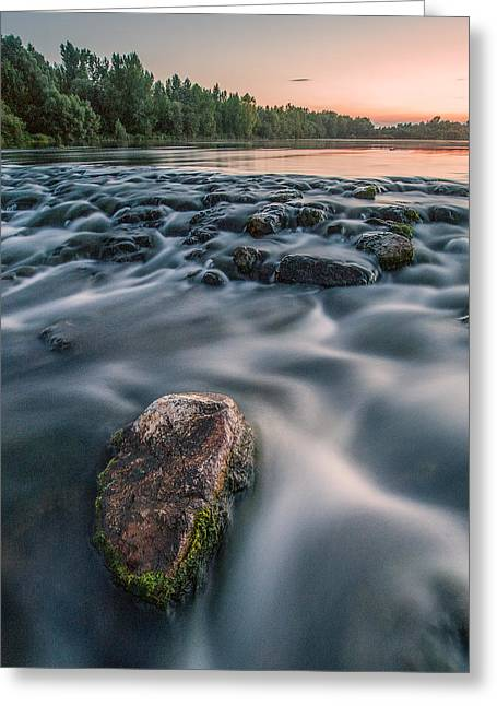 Aquatic Metalic Greeting Card by Davorin Mance