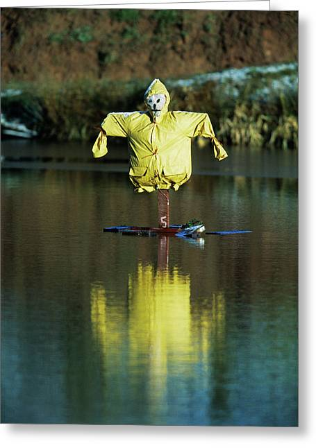 Aquatic Scarecrow Greeting Card