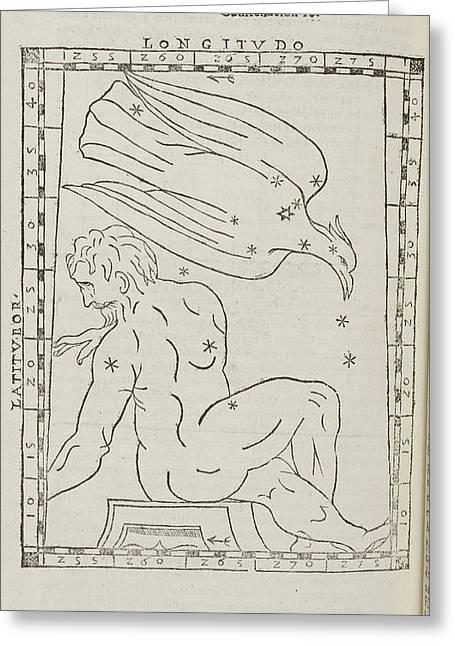 Aquila Star Constellation Greeting Card