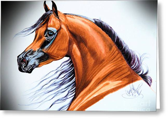 Arabian In Color Pencil Greeting Card by Cheryl Poland