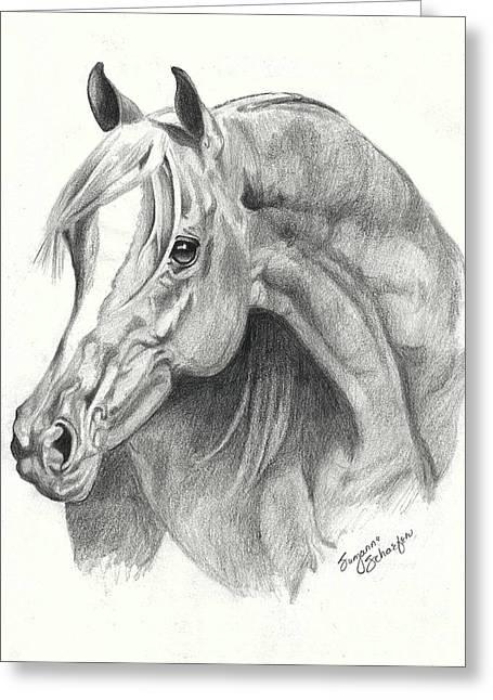 Arabian Stallion Greeting Card by Suzanne Schaefer
