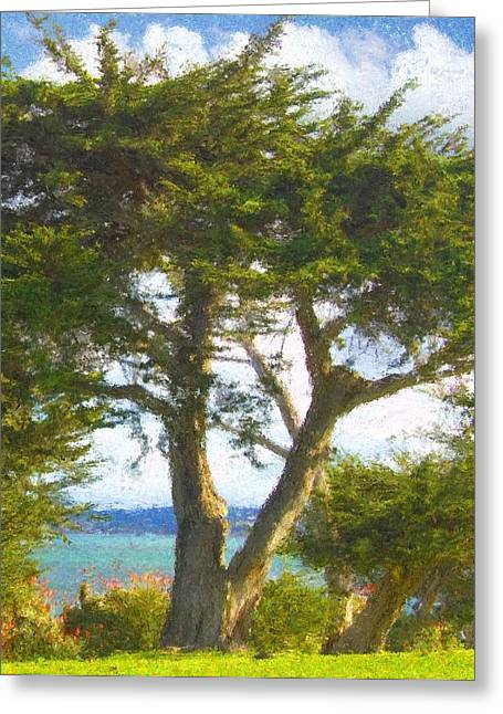 Arbor Bay Greeting Card by Jim Pavelle