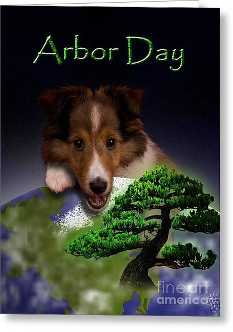 Arbor Day Sheltie Greeting Card by Jeanette K