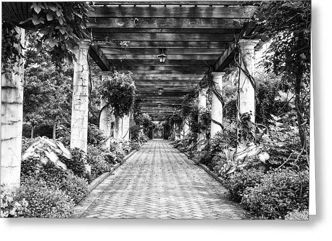 Arbor Walkway Greeting Card