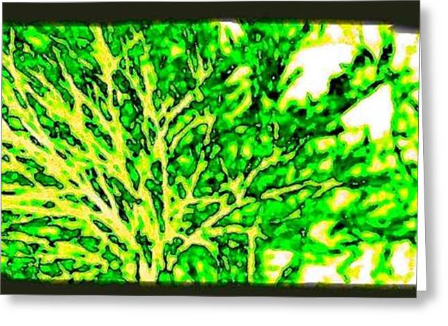 Arbres Verts Greeting Card by Will Borden