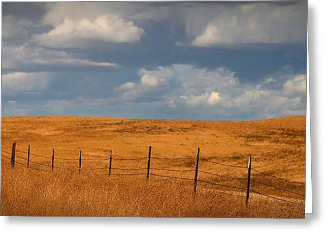 Arbuckle Fence Line Greeting Card