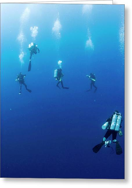 Archaeologists Diving To Shipwreck Greeting Card by Noaa