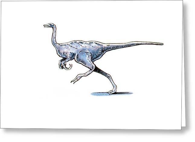 Archaeornithomimus Dinosaur Greeting Card