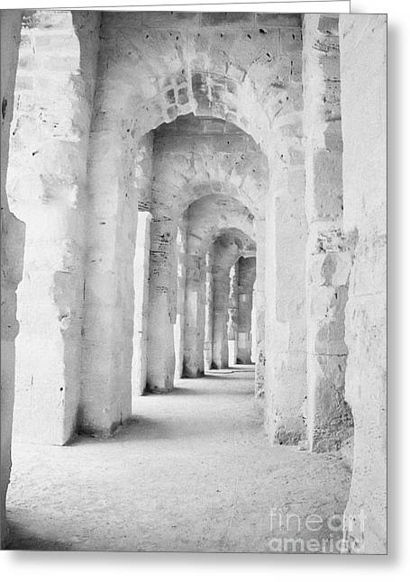 Arched Walkway At Entrance Of The Old Roman Colloseum At El Jem Tunisia Greeting Card