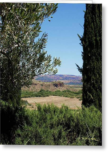 Arcosanti View Greeting Card