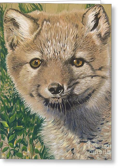 Sold Arctic Fox Greeting Card