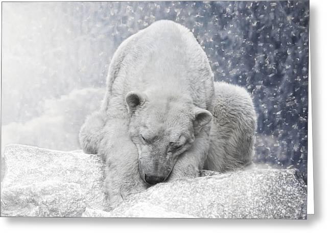 Arctic Giant Sleeping Greeting Card by Joachim G Pinkawa
