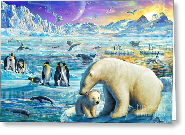 Arctic Sundown Greeting Card by Adrian Chesterman