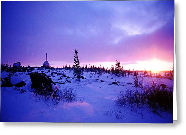 Arctic Sunset In Churchill Canada Greeting Card