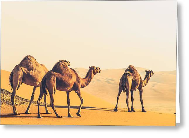 Are We Lost  Greeting Card by Ahmed Rashed