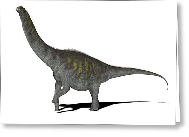 Argentinosaurus Dinosaur Greeting Card