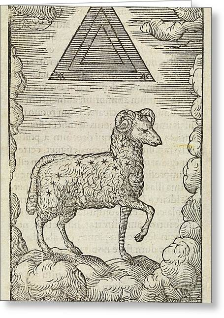 Aries And Triangulum Greeting Card by Middle Temple Library