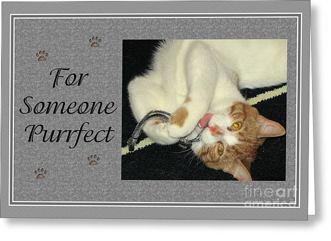 Greeting Card featuring the digital art Aries Purrfect by JH Designs