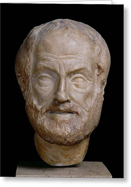 Aristotle  Greeting Card by Lysippos