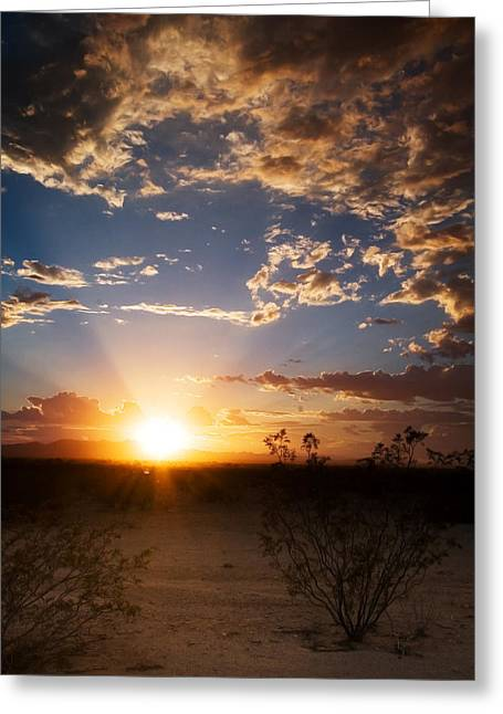 Arizona Desert Sunset Greeting Card