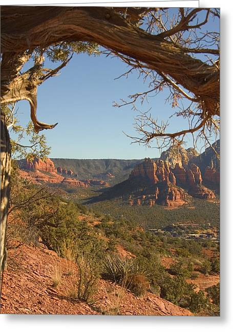 Arizona Outback 5 Greeting Card by Mike McGlothlen