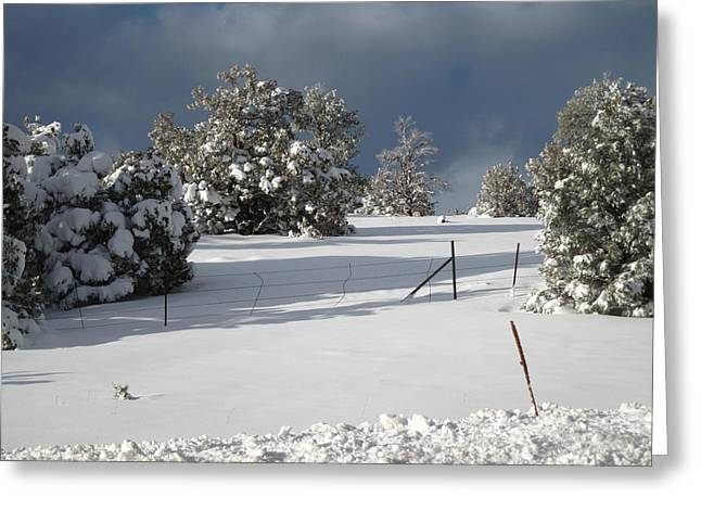 Arizona Snow 3 Greeting Card