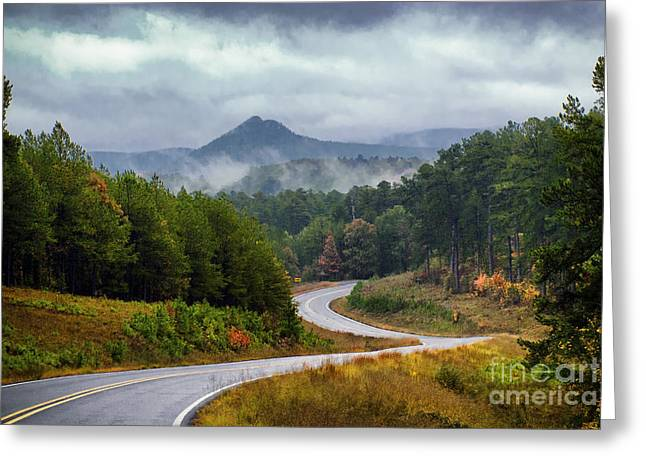 Arkansas Logging Road  Greeting Card