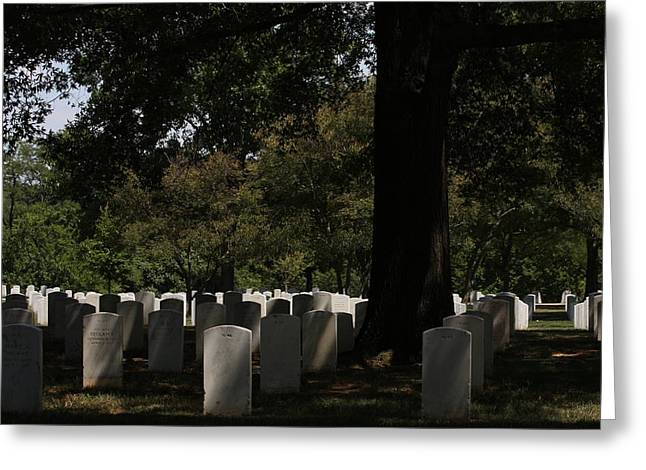 Arlington National Cemetery - 121243 Greeting Card by DC Photographer