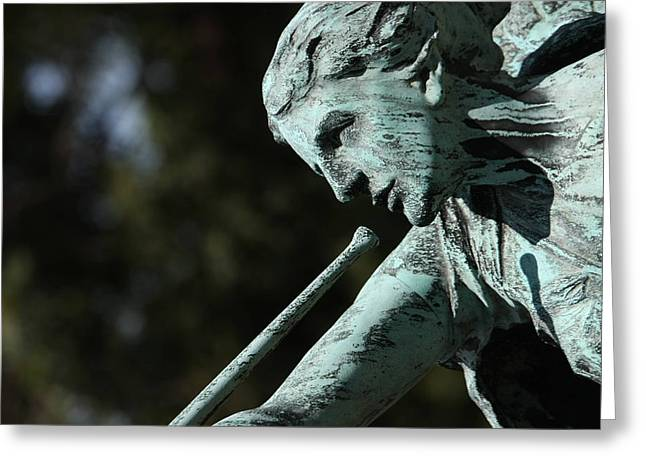 Arlington National Cemetery - 12127 Greeting Card